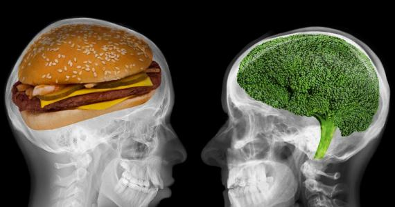 A brain with a cheeseburger inside and a brain with broccoli inside